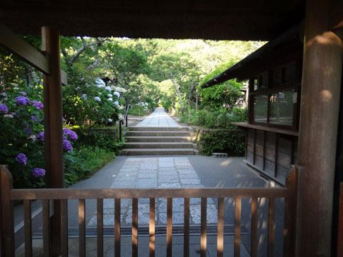 東慶寺。うまく撮れなかったにゃ・・・。