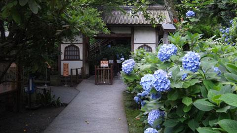名月院。拝観券売り場(?)の向こう側にアジサイがたくさん咲いていますが,門からは見えないでござる。