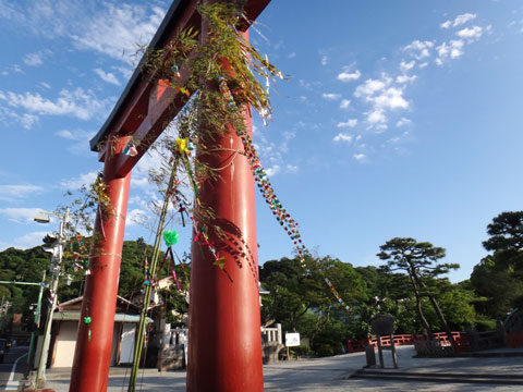 鶴岡八幡宮。こんな飾りつけ初めて見ましたが,やっぱり,七夕?