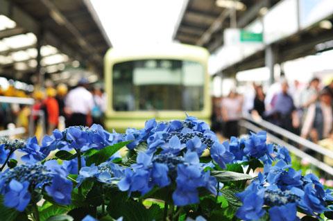 旅は江ノ電から(^^) 「のりおりくん(一日乗車券」で全区間乗り放題,580円です。