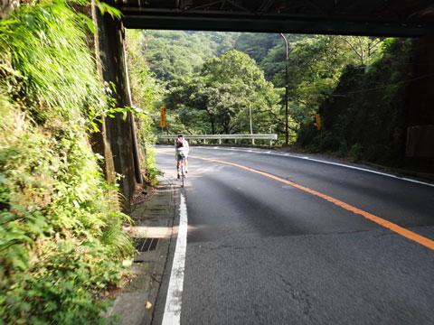 上は箱根登山鉄道の高架です。緑が爽やか(^^)