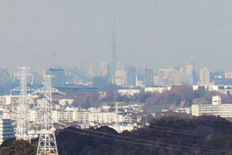 肉眼でも東京スカイツリーが見えます。富士山も良く見えるのですが,この日は雲に隠れていました。