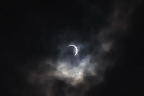 三日月のようになってきました。本当に,月の形なんだなぁ。