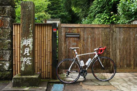 毎週,鎌倉界隈でアジサイポタしていました(^^)