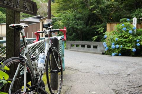 わざわざ自転車を停めて撮るほどではないような気が・・・?