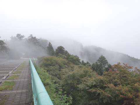 下ろうとしたら,今度は霧が上ってきたけど,これくらいなら行けるでしょう(^^)