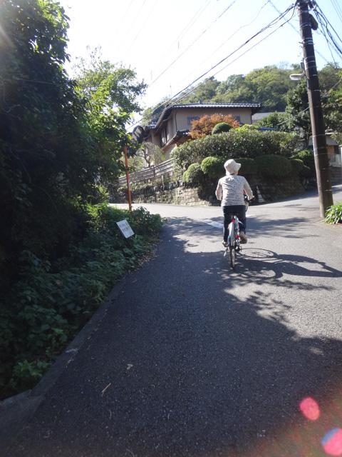 笛田→極楽寺の激坂を上る