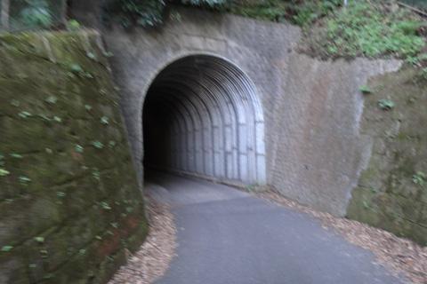 本当に通れるのか,怪しげなトンネル。