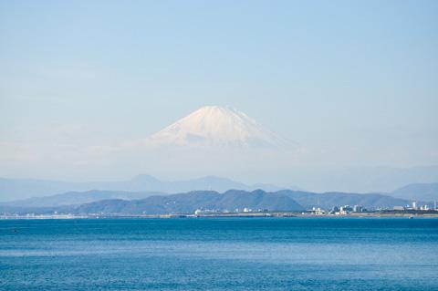 デカ富士山。もっと寒くなると,空気の透明度が上がってよく見えるようになります。