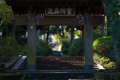 浄智寺は,この落ち着いた山門が好きです。