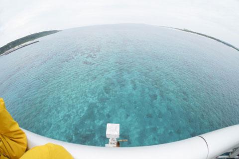 橋の上からは,さっきまで潜っていた海が一望できる絶景でした。
