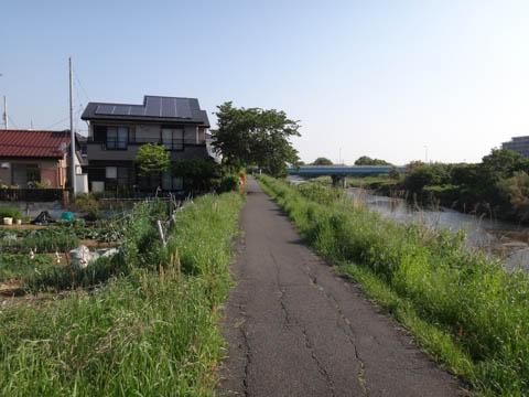 金目川CRを自走して名古木に向かう。やる気がうせる,こののどかさ(^^)