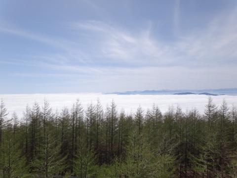 ずっと見ていたい,すばらしい雲海でした。