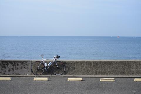 帰りはR134をのんびり走る(^^) 七里ガ浜です。