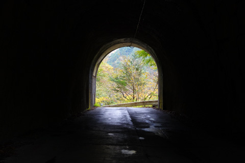 トンネルから見る紅葉っていいなぁ・・・。
