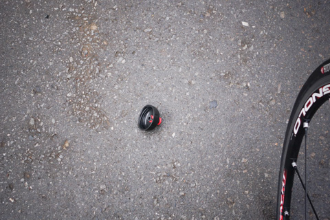ポトン,と路上に落ちた黒い物体。コレはいったい・・・?