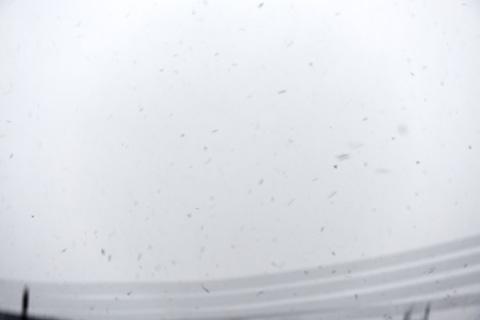 延々と雪が降ってきます。