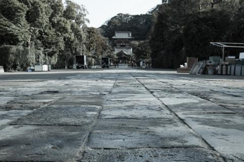 朝の鶴岡八幡宮は人気も少なく,静かです。