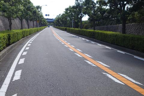 事故現場の上流50mほど。ほんとに良く整備された,広い道です。