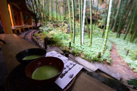 竹林にある茶屋。なんともぜいたくな時間です・・・。