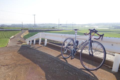 三浦半島は,ちょっとした北海道のような気分も味わえます。