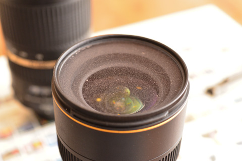 どび~ん。最愛の16-35mm F4が大変なことに!