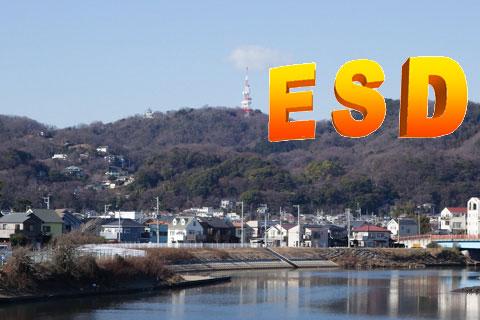 湘南平に建てられた,ESDの看板(うそ)