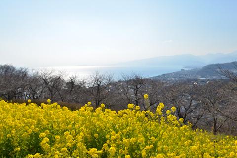相模湾,湯河原あたりまで眺望があります。もう少し右には富士山も(^^)
