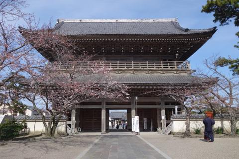 山門は(円覚寺ほどではないけど)大きくて立派です。