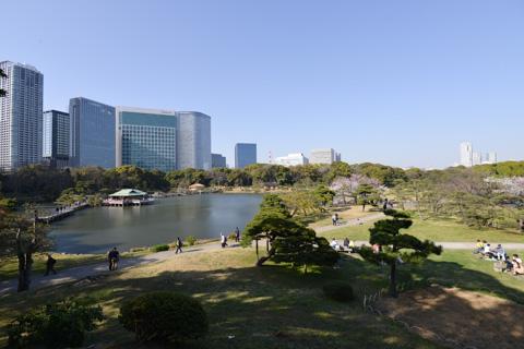 都心とは思えない,広大な公園です。
