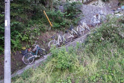 かなりの勾配の階段に整然と並べられた自転車たち。う~む,すごい。