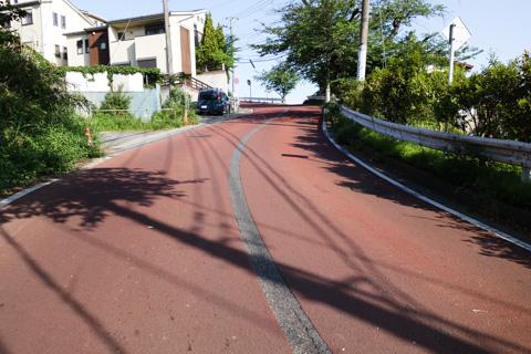 久しぶりに鎌倉山を常盤口から登る。なかなかの急こう配がうれしい(^^)