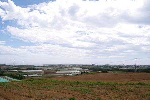 遠~く方に,宮川公園の風車が見えます。