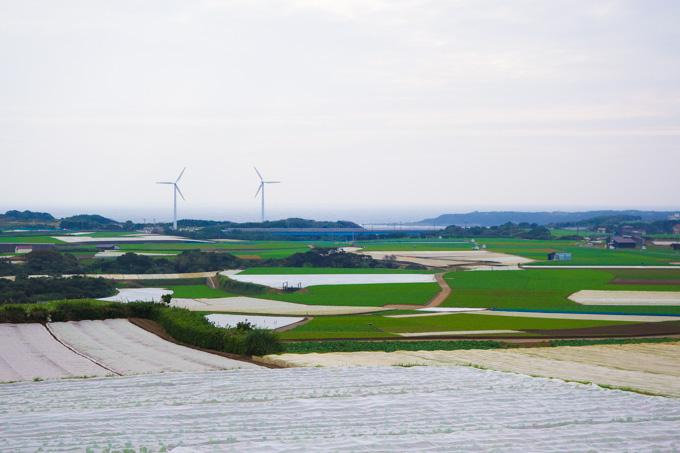 行くたびに思いますが,三浦半島の先端は,どこか北海道っぽいです(^^)