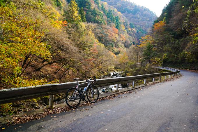 10~11月は紅葉の裏ヤビツを走るのが楽しみです(^^)