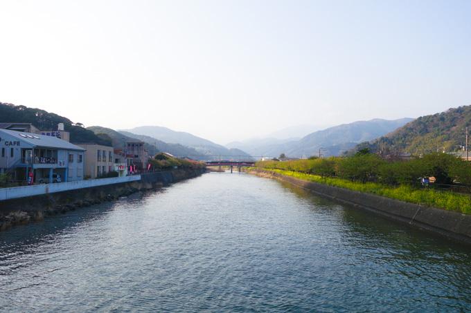 おぉ~,ついに河津町へ到着! 川の両側には満開の河津桜が・・・?