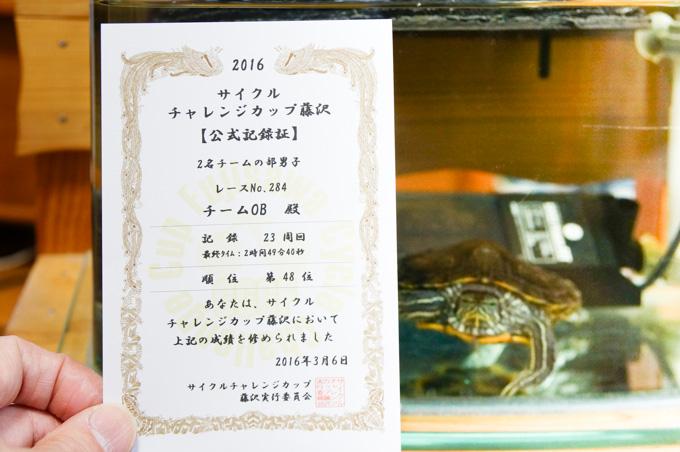 まさかの部門48位に,カメ太郎(2歳)もビックリ!