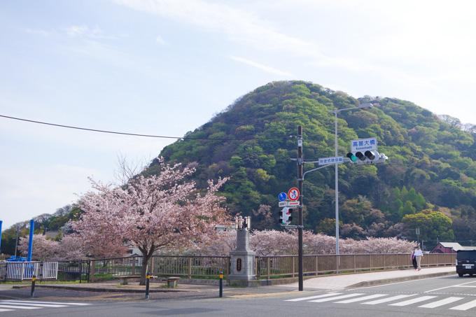 この景色を見て「桜キレイ~」は普通の人。「上ってみてぇ~」は坂バカ。