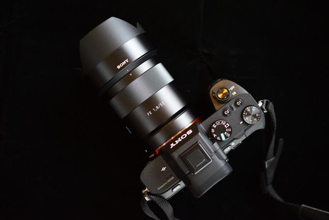珍しく,渋く撮ってみました。α7II + Sonnar55mm F1.8です。
