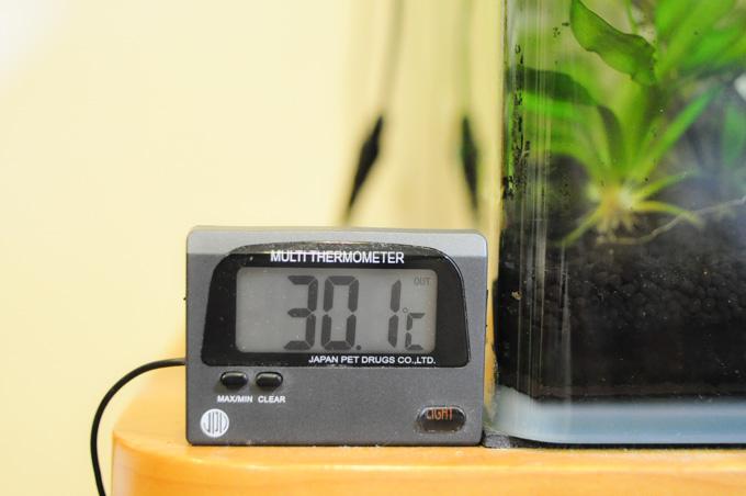 なんと,14年選手のエアコンがご臨終になられて,室内はこの温度。夜には32℃まで上がりました・・・。