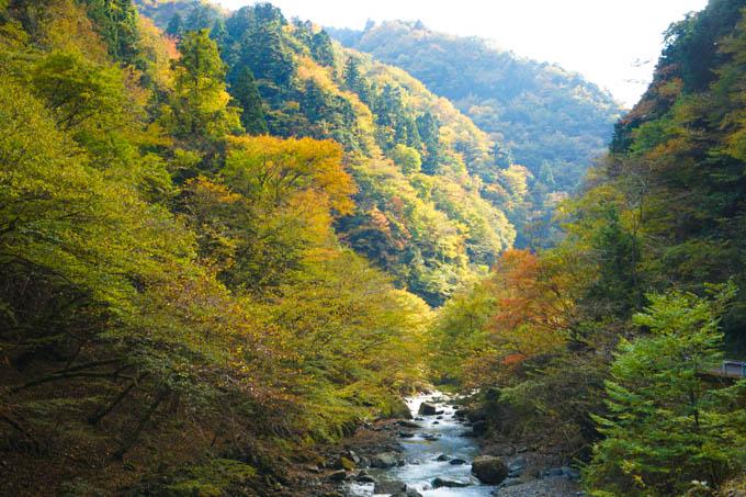 聞こえるのは、ほとんど、川の音だけです。静かだなぁ・・・。