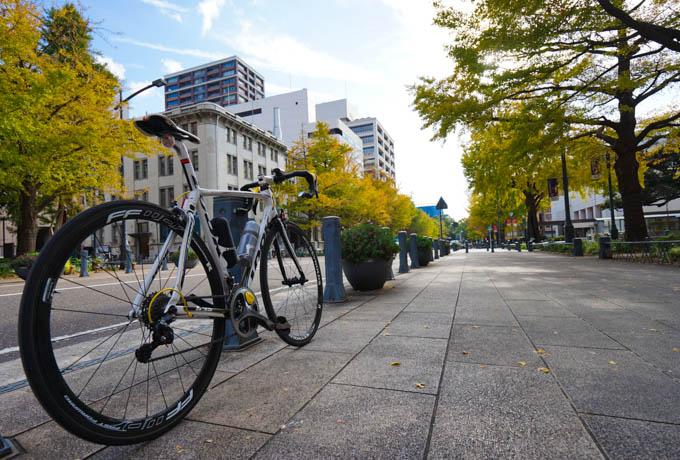 横浜の日本大通り。例年は眩しいくらい、まっ黄色のイチョウ並木なんだけど・・・。