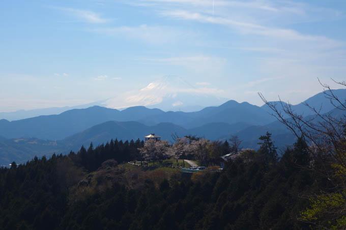 帰り道、日を浴びて、富士山が輝いていました。