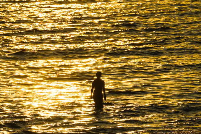 黄金色の渚を歩く。