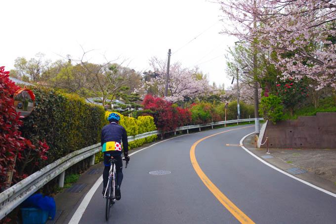 まずはご近所鎌倉山で楕円練習。あまりの違和感に大笑いしながら登ってました。