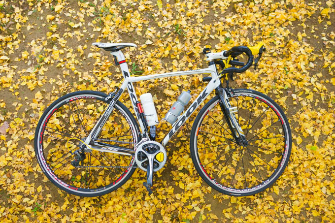 もう、10年くらい同じ写真撮ってますね。自転車も同じだし・・・。