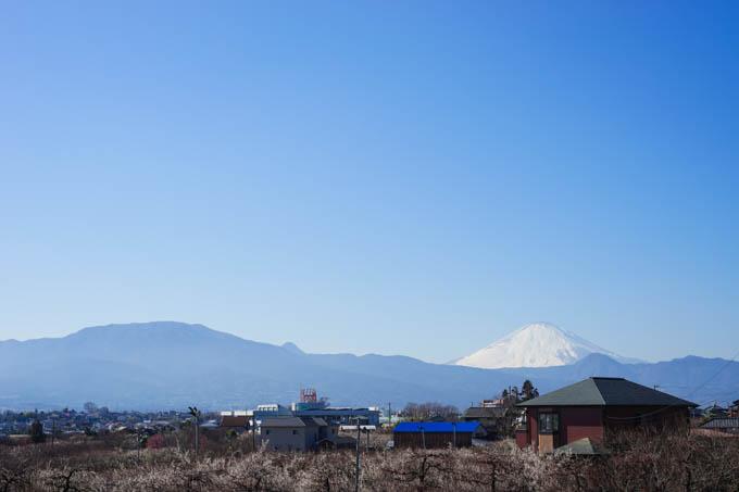 富士山も見えて、なかなかいいところです。