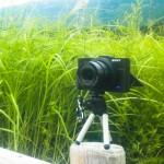 究極のフォトポタカメラ(か?) SONY DSC-RX100 II (使用レビュー編)