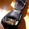 TOPEAKの巨大サドルバッグ『DynaPack』
