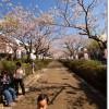 春の鎌倉ファミリーツアー